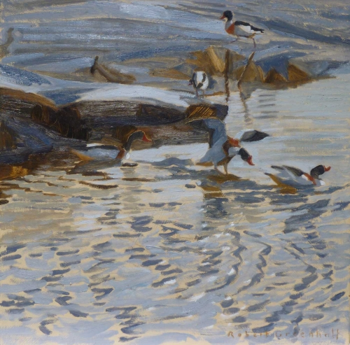 Greenhalf-Robert-Shelducks-chasing.jpg