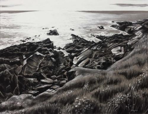 Gumn-Alexandra-Newquay-Coast.jpg