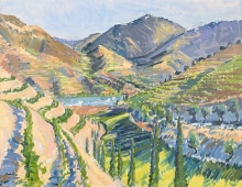 Hall-Alice-Douro Valley Portugal.jpg