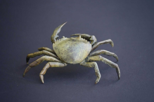 Hall-Michelle-Shore-crab.jpg