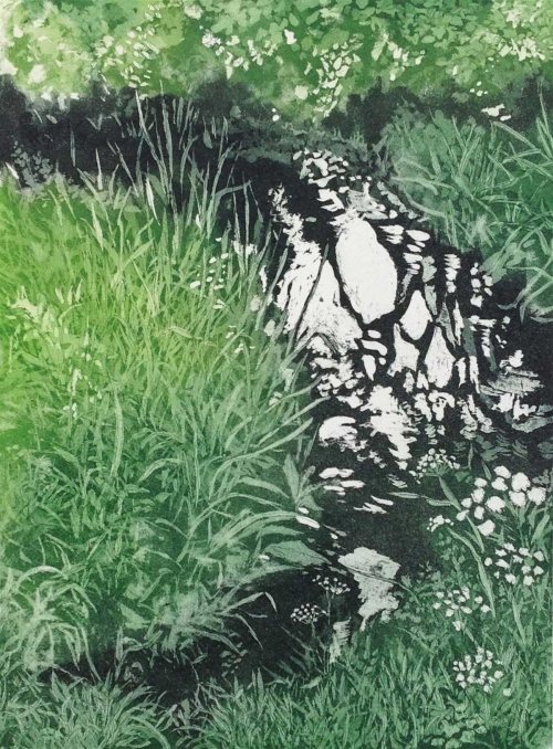 Halsby-Miranda-Purlieu-Stream-To-The-River-Parrett-1.jpg
