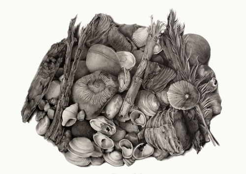 Harrald-Katy-Coastal-Collection.jpg