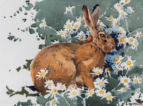 Haslen-Andrew-Hare-and-Daisies.jpg