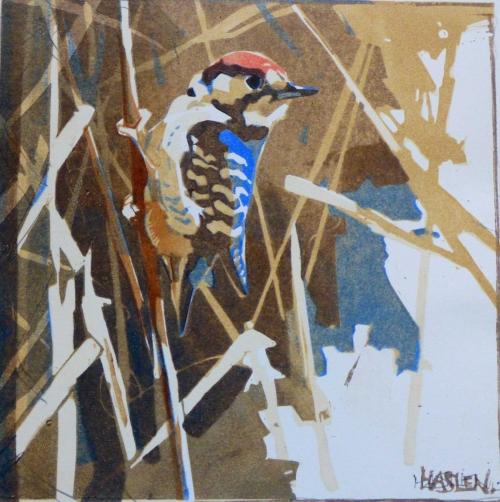 Haslen-Andrew-Lesser-Spotted-Woodpecker.jpg