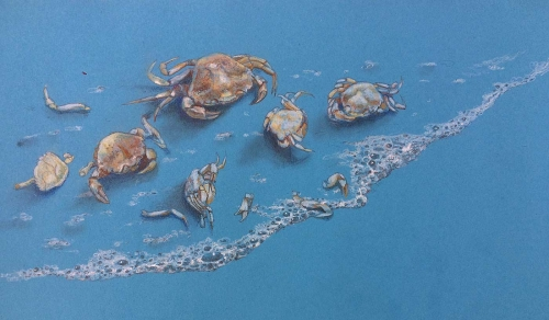 Hodges-Kaye-Crab-Molt-With-Necklace-Of-Bubbles.jpg