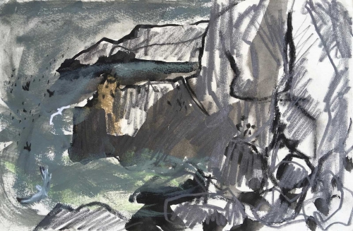 Ingrey-Counter-Emily-Cliffs-and-rocks-with-Guillemots-and-Kittiwakes-St-Abb-s-Head.jpg