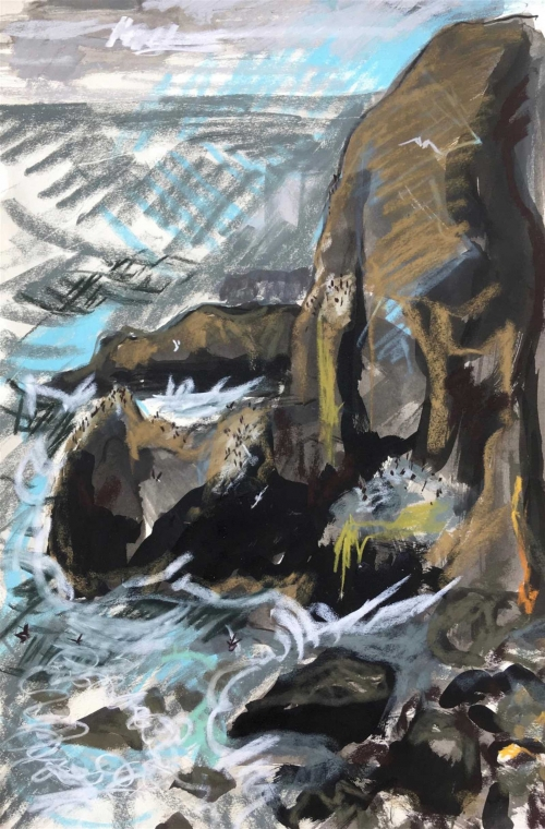 Ingrey-Counter-Emily-Cliffs-with-nesting-Guillemots-and-large-swell-St-Abb-s-Head.jpg