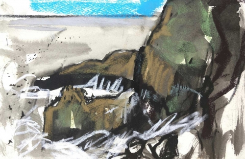 Ingrey-Counter-Emily-St-Abb-s-Head-and-crashing-waves-with-Kittiwakes-and-Guillemots.jpg