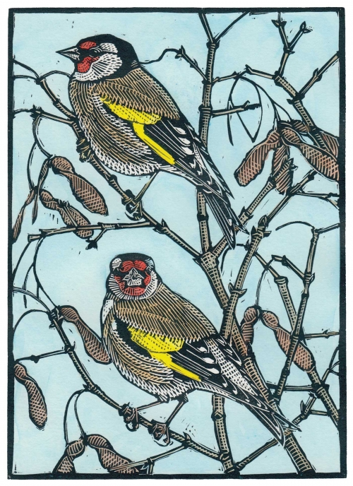 Jarvis-Richard-Goldfinches.jpg