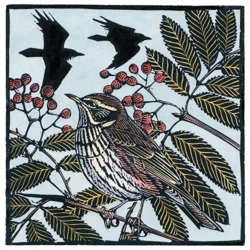 Jarvis-Richard-Redwing,-Rowan-And-Ravens.jpg