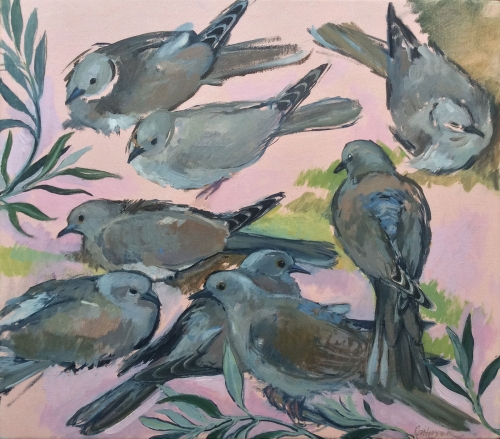 Kuhfeld-Cathryn-Studies-of-collared-doves.jpg