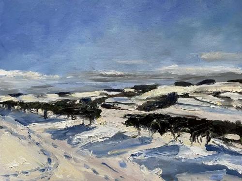 Laffey-Cooper-Maria-Snowy-Fields-South-Northumberland-January-2021.jpg