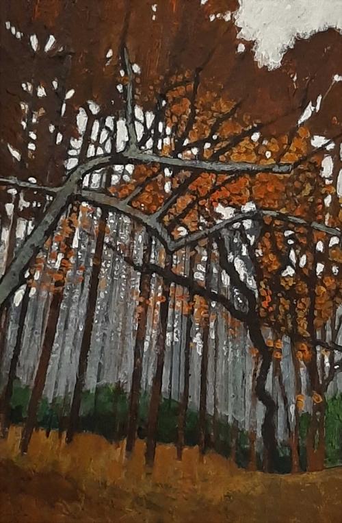Lieber-Helen-Forest-in-Autumn.jpg