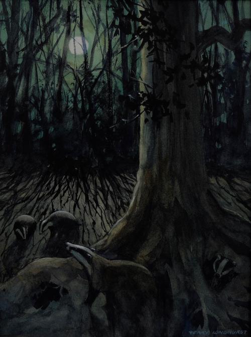 Longhurst-Terence-Badgers-in-the-moonlight-.jpg