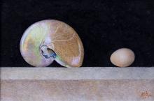 Read_Sue_Shell & Egg.jpg