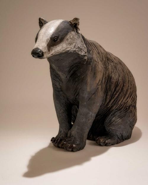 Mackman-Nick-Badger-Sitting.jpg