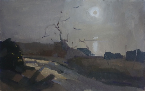 Marsh-Tom-Glimpse-of-Morning-Sun-in-the-Mist.jpg