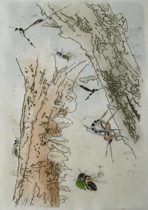 Mascarenhas-Melanie-Carpenters-cutters-curios.jpg