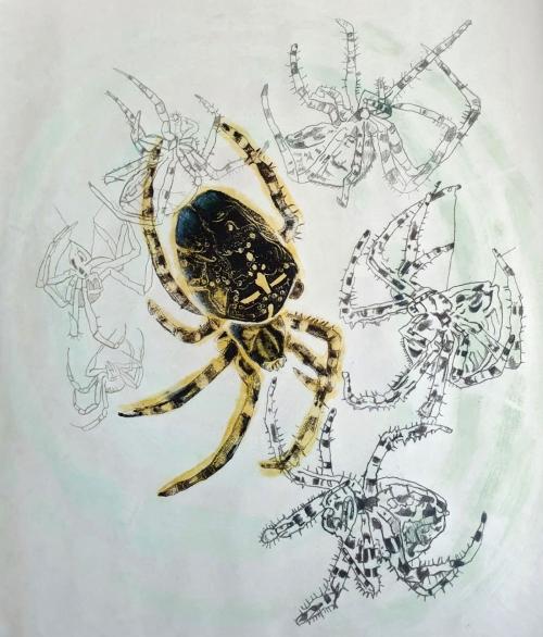Mascarenhas-Melanie-Spinne-.jpg
