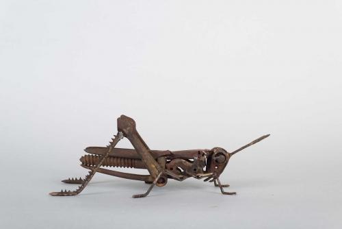 Mead-Harriet-Grasshopper-(7).jpg