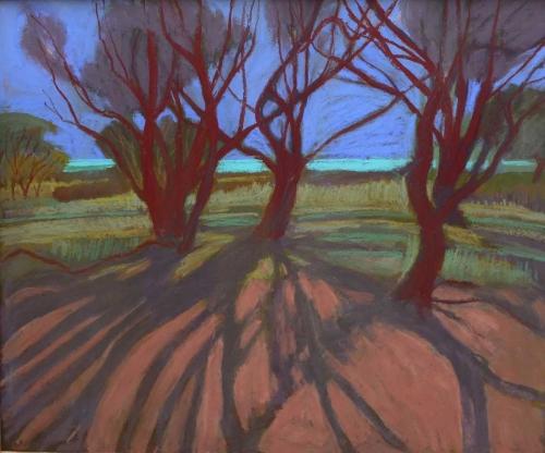 Campion-Sue-Long-Tree-Shadows.jpg