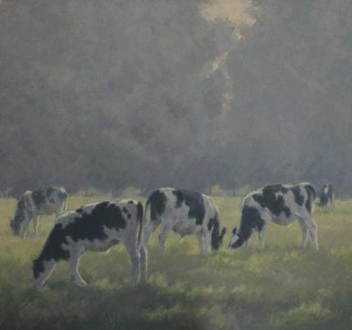 Heat-Ann-Young-cattle.jpg