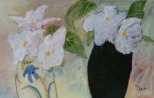 Bower-Susan-White Begoniasjpg.jpg