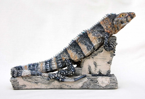 Moger-Jill-Mexican-Iguana-(Spinytailed).jpg