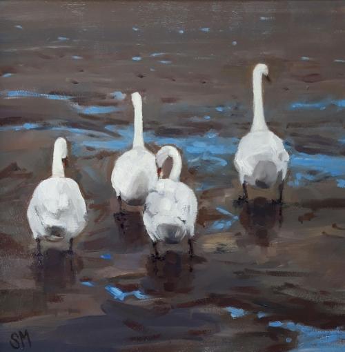 Monteath-Susan-Swans-at-Aveton-Gifford-.jpg