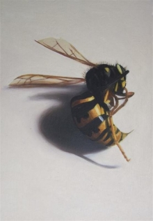 Taber-A Lincoln-Wasp.jpg