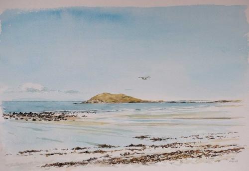 Neill-William-Orasay-Island-With-Black-Headed-Gull.jpg