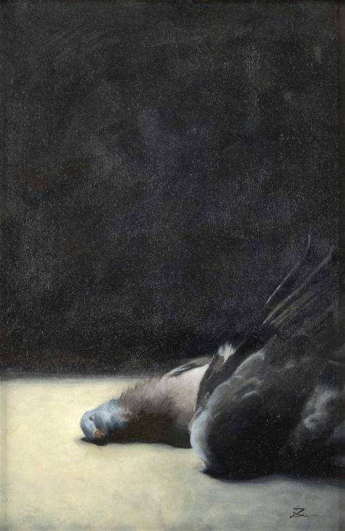 Dingemans-Lizet-Fallen-Dove.jpg