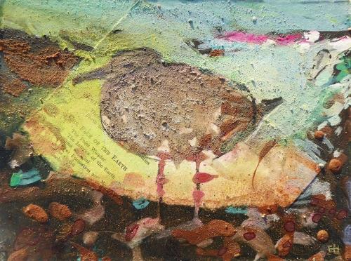 Hatch-Frances-Immature-Gull-before-Dawn-Sidmouth.jpg