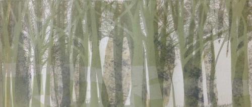 Studd-Sara-Tree-Line.jpg