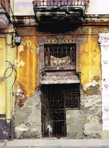 Feld-Tony-Havana.jpg