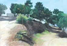 Crittenden_James_Landscape Axarquia.jpg