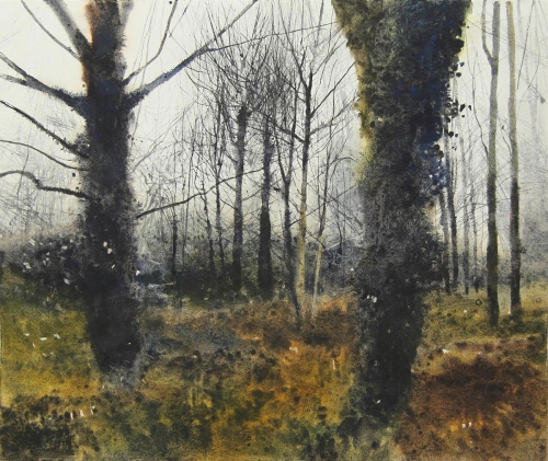 Parfitt-David-A-Dark-Ivy-Mist-And-Trees.jpg