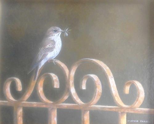 Parry-David-Spotted-Flycatcher.jpg