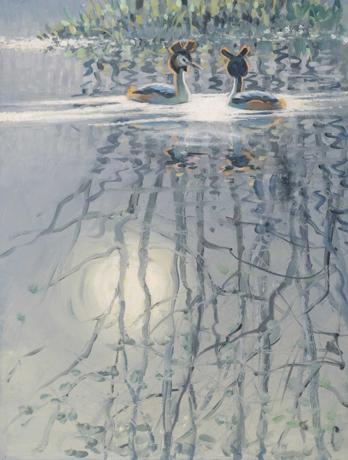 Partington-Peter-Morning-Grebes.jpg