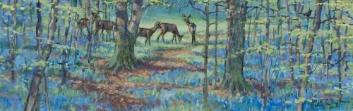 Partington-Peter-Roe-Deer-in-the-Bluebells.jpg