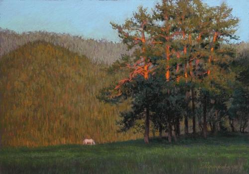 Pogozheva-Ekaterina-Altai-Gold.jpg