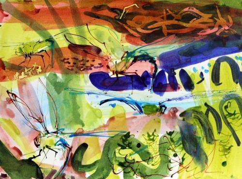 Pollard-Nik-Emperor-Dragonfly-drawing-4.jpg