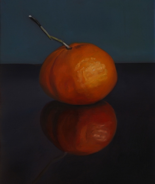 SueSpaull-One-Clementine-Reflections.jpg