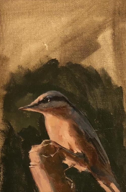 Starr-Felicity-A Bird in the Garden.jpg