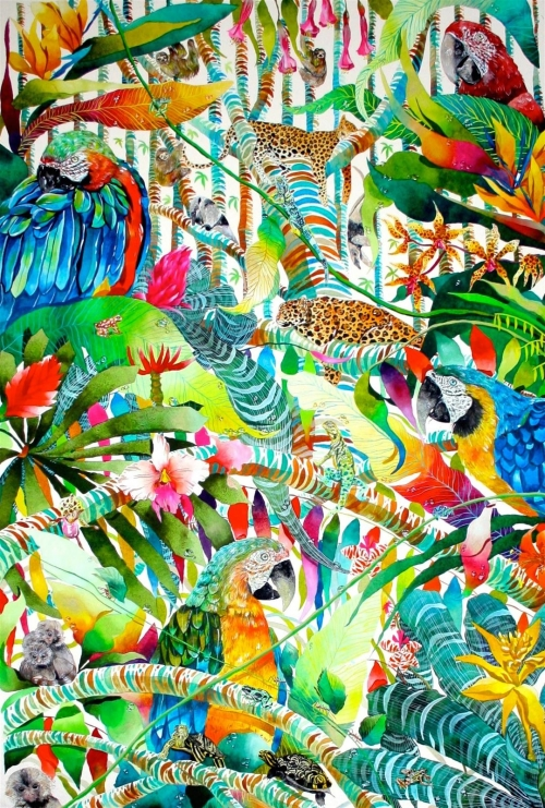 Morgan-Kate-Marmosets and macaws.jpg