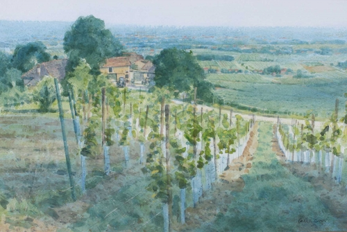 Allbrook-Colin-New-Vines-Bergerac.jpg