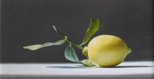 Alexander-Linda-Amalfi-Lemon.jpg