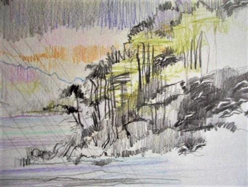 Relph-Susan-Sheildaigdiagonal-rainfinal-brief-study