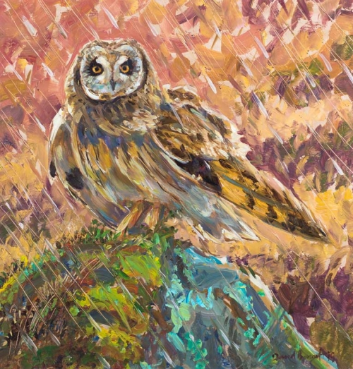 Bennet-David-Short-Earred-Owl.jpg