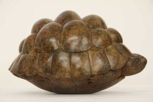 Binder-Adam-Tortoise.jpg